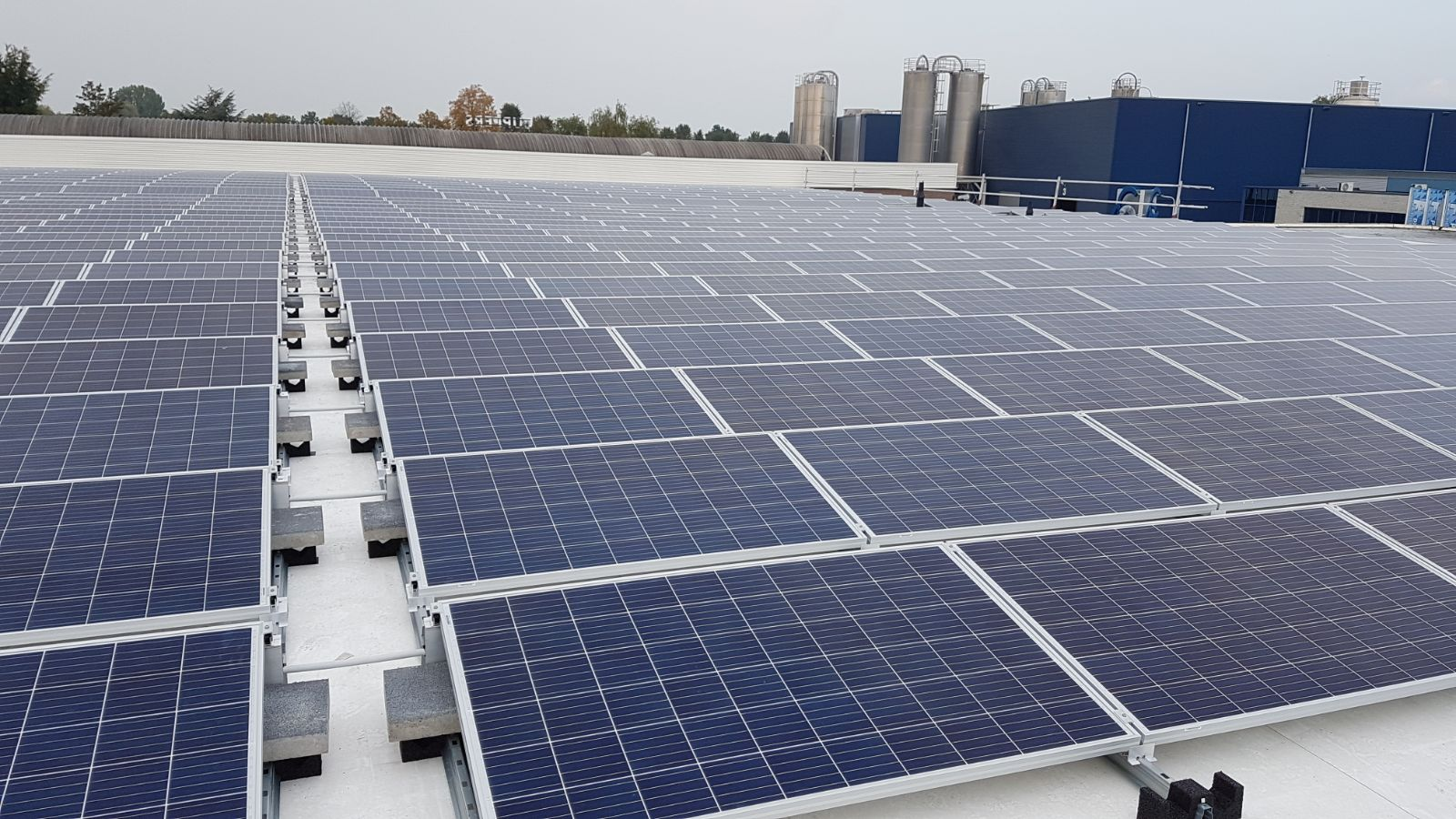 zonnepanelen bedrijf